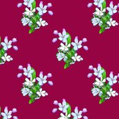 Rapple_blossoms_with_pink_on_red_shop_thumb