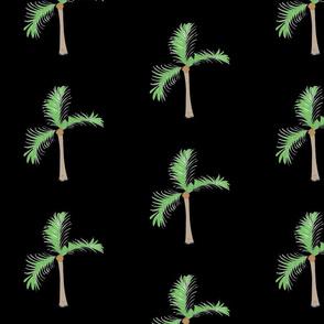 palms 7 on black