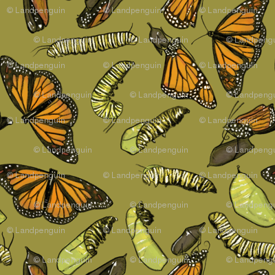 Monarch Butterflies and Caterpillars on Olive Green