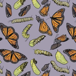 Monarch Butterflies and Caterpillars on Purple