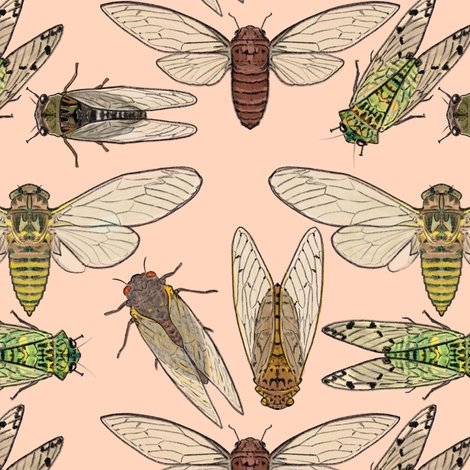 Rrcicadas_on_pink_shop_preview