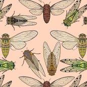 Rrcicadas_on_pink_shop_thumb