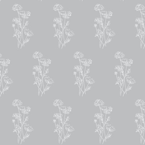 Queen Anne's Lace White on Gray