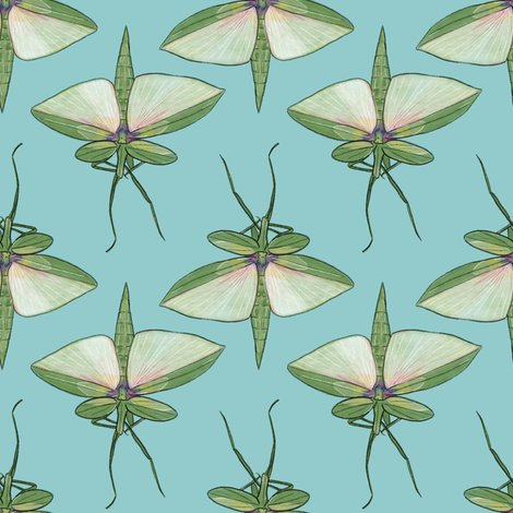 Rrstick_insect_on_light_blue_shop_preview