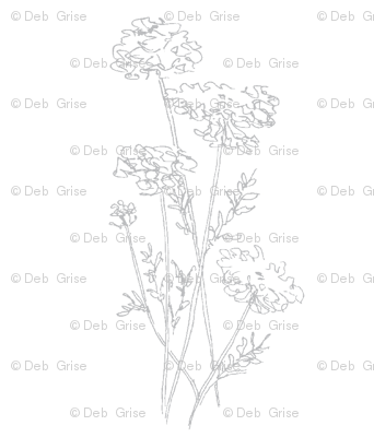 Queen Anne's Lace Gray on White