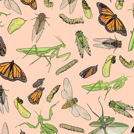 All the Insects on Light Pink fabric by landpenguin on Spoonflower - custom fabric