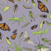 Rrall_the_insects_on_light_purple_shop_thumb
