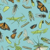 Rrall_the_insects_on_light_blue_shop_thumb