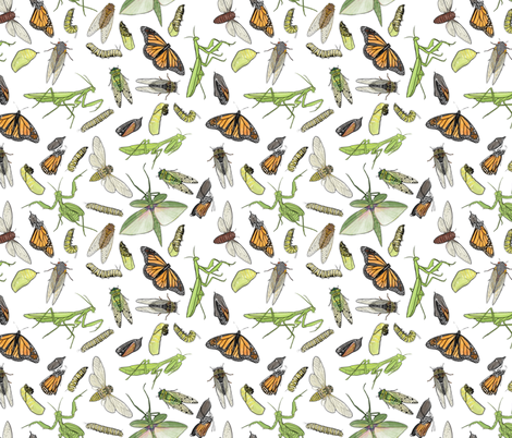 All the Insects fabric by landpenguin on Spoonflower - custom fabric