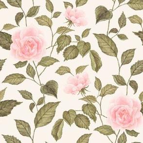 Garden Rose Blush