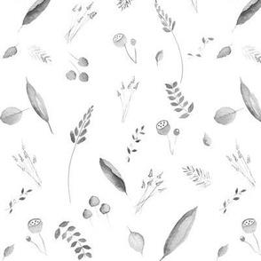 Fields of Barley - Steel