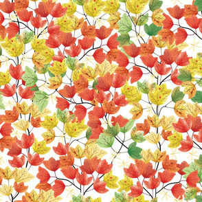 Autumn Leaves: Fall Foliage white bg