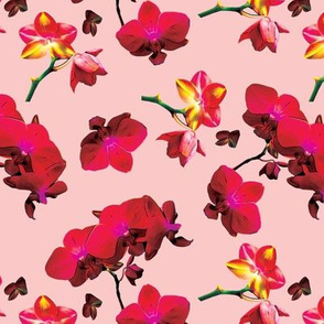 Red Orchids on Pink Upholstery Fabric