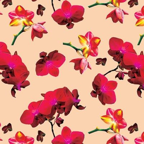 Red Orchids on Light Orange Upholstery Fabric