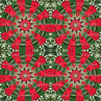 Red and Green Pinwheels 2344