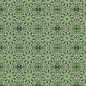 Green Sedum Pinwheels 2337