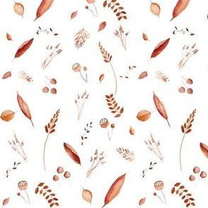 Fields of Barley - Wine