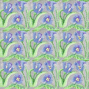 blue_tulip