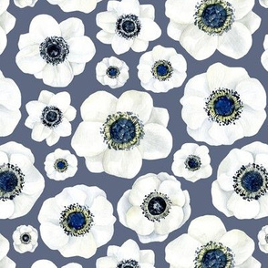 Watercolor white anemone on blue dark background