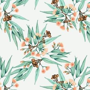 Gumnuts & Eucalyptus Apricot Blossoms