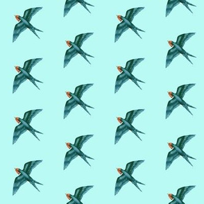Swift Swallow Retro Aqua