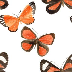 Watercolor Butterflies - Large Scale