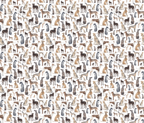 Greyhounds, Wippets and Lurcher Dogs! fabric by elena_o'neill_illustration_ on Spoonflower - custom fabric
