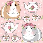 guinea-pig-tea-party