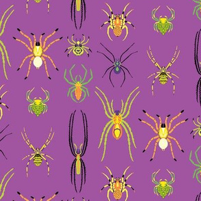 Mini Pop Art Spiders in Purple