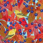 R1goldfinches_on_wild_red_grapes__blue2__shop_thumb