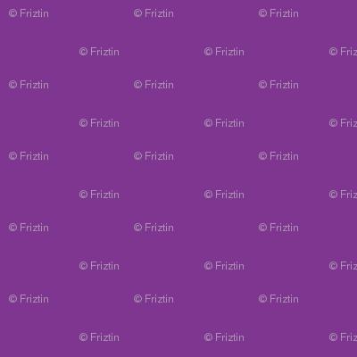 M+M Eggplant Solid by Friztin
