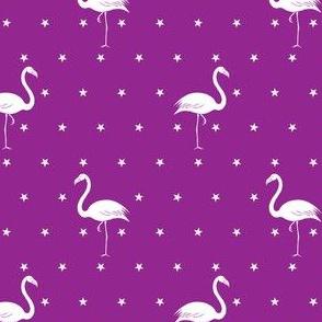 flamingos and stars white on purple