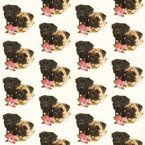 Pugs with flowers on cream background