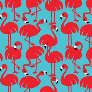 Gamme_Flamingos-03