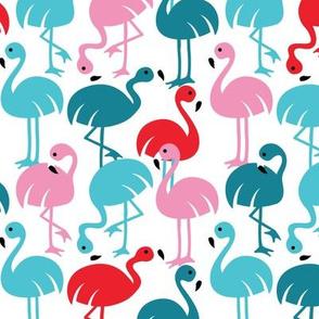 Gamme_Flamingos-07