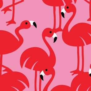 Gamme_Flamingos-08