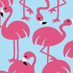Gamme_Flamingos-20