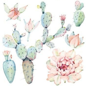 Watercolor Paddle Cactus in Pastel