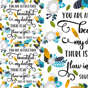 you are altogether beautiful blanket + 2 lovies