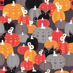 Find the Halloween Black Cat // brown grey background black kitties orange red yellow black & white cute pumpkins