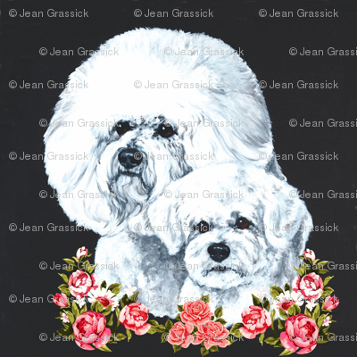 Bichons with flowers on black