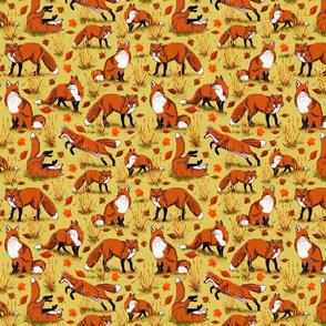red_fox_autumn_8x8