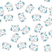 blue tabby cat on white