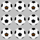 custom order - personalized soccer balls - Breck