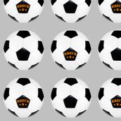 custom order - personalized soccer balls - Breck
