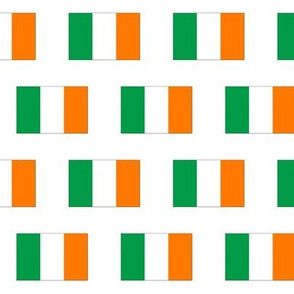 Irish Flag // Small