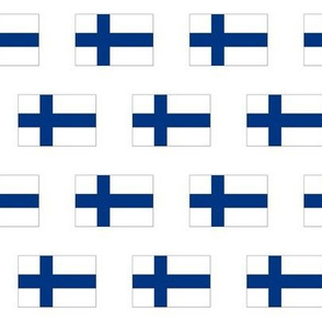 Finnish Flag // Small