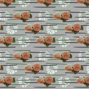 Rose with grey background