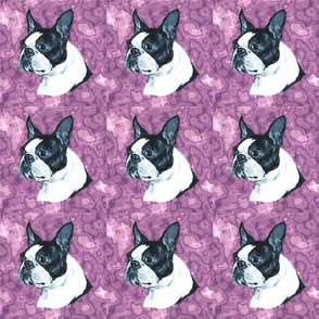 boston terrier head on purple marble with highlights
