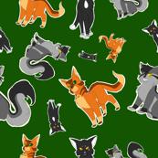 Warrior Cats Pattern